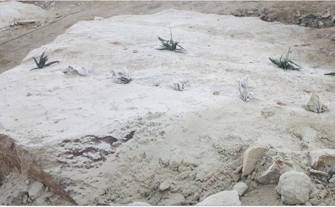 Donde comprar cemento expansivo en madrid